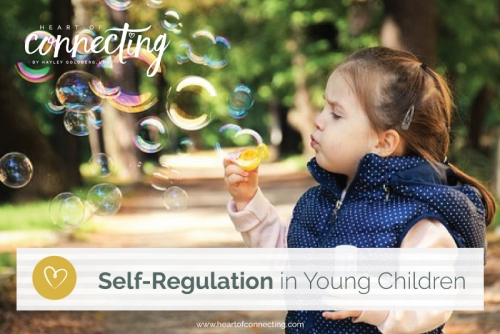 Self-Regulation in Young Children